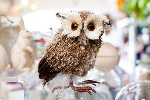 Что означает талисман сова и как его использовать (фото)