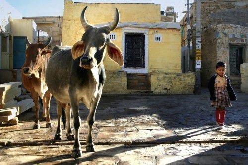 Индийские талисманы: основные виды, значение, фото