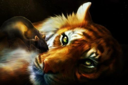 Тигр и Крыса: совместимость в любви, браке по гороскопу