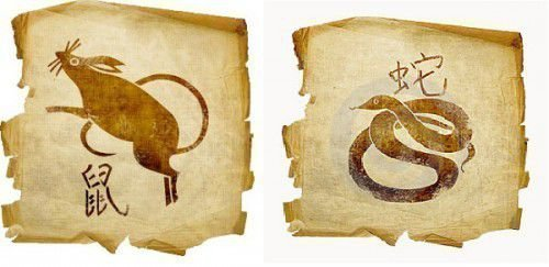 Крыса и Змея: совместимость по гороскопу в любви и браке