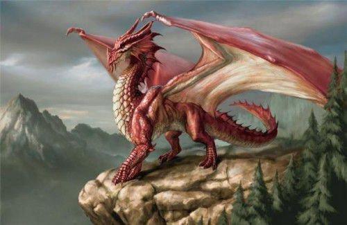 Змея и Дракон: совместимость в любви, браке по гороскопу
