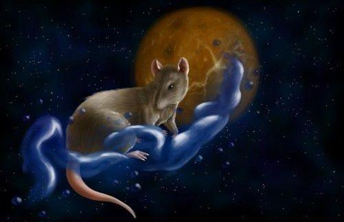 В год Крысы рождаются свободолюбивые личности