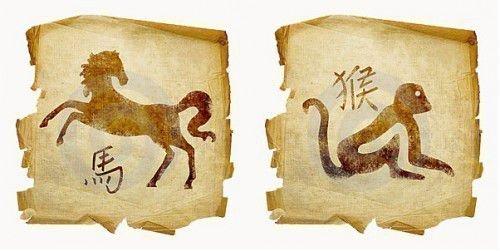 Гороскоп совместимости лошади и обезьяны