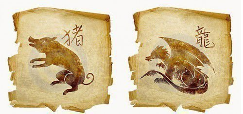 Кабан и дракон по гороскопу