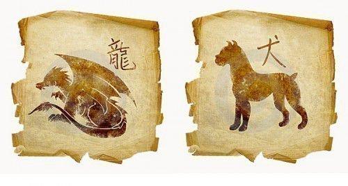 Дракон и Собака: совместимость в любви, браке по гороскопу