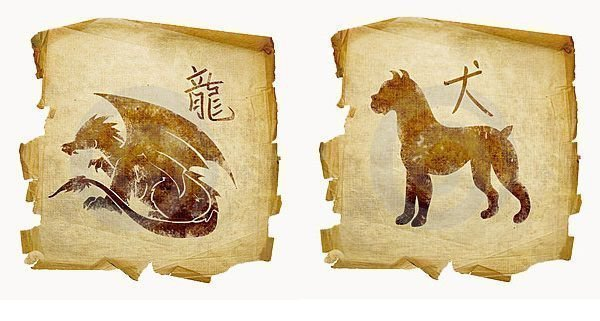 Гороскоп женщина собака мужчина дракон