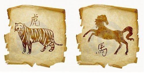Совместимость тигра и лошади по гороскопу