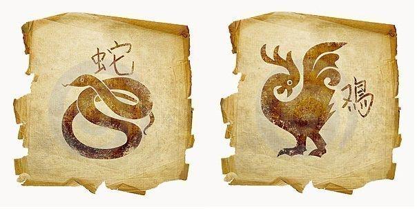 По китайскому змеи совместимость гороскопу