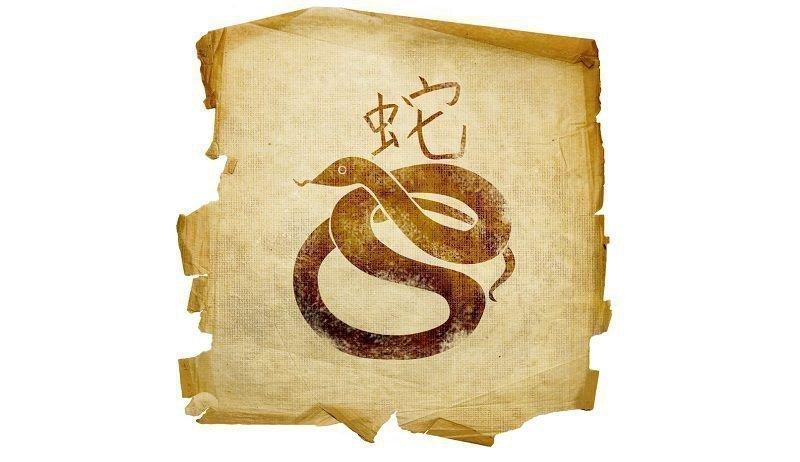Совместимость Змеи По Китайскому Гороскопу