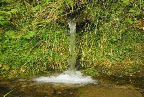 Живая родниковая вода