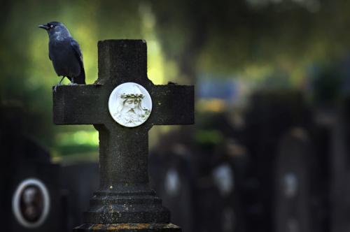 Крест и ворон