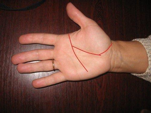 Линия жизни-главная линия на руке