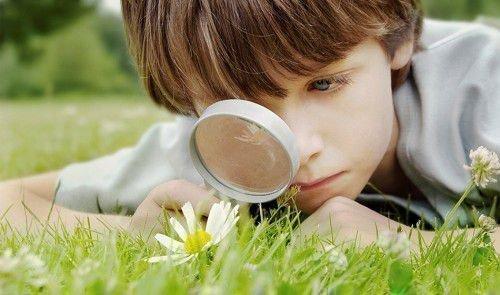 Дети отличаются особенным любопытством