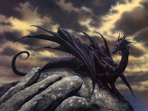 Дракон стремится к успеху и карьере