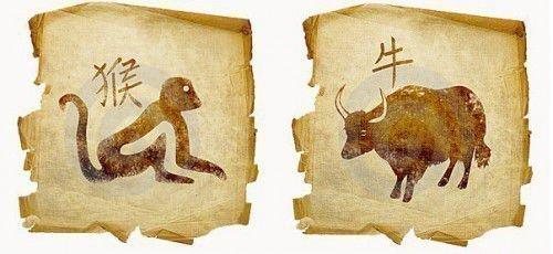 Знаки гороскопа