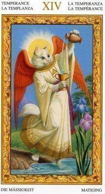 Таро Белых кошек Чаши